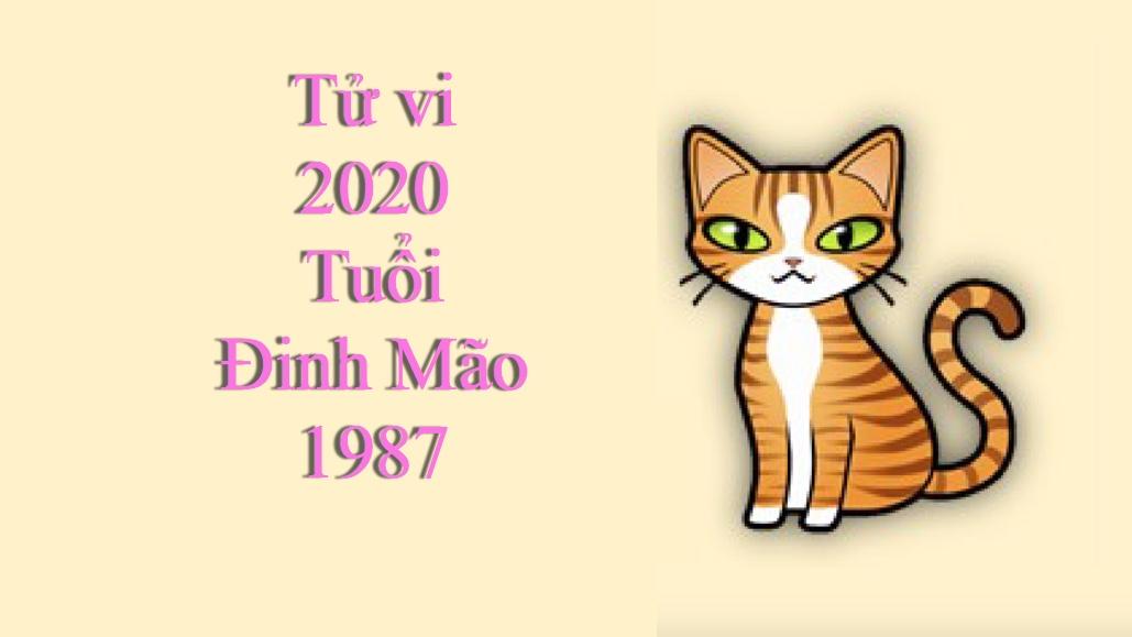 Tử vi tuổi Đinh Mão 1987 năm 2020