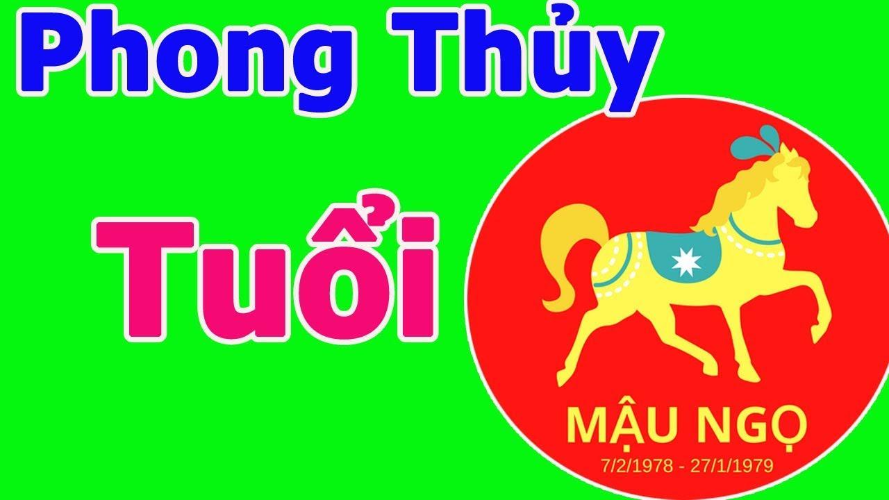 Phong thủy nhà ở năm 2020 cho người tuổi Mậu Ngọ sinh năm 1978